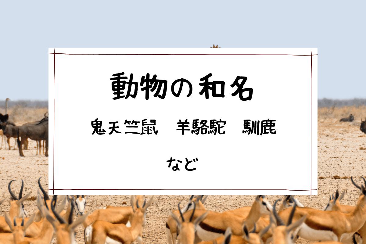 動物の和名の読み方,鬼天竺鼠,羊駱駝,馴鹿など